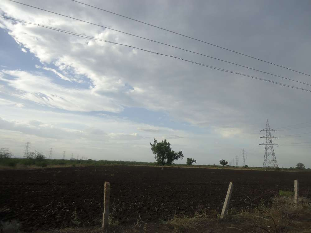 Rain-fed agriculture lands in Tamil Nadu